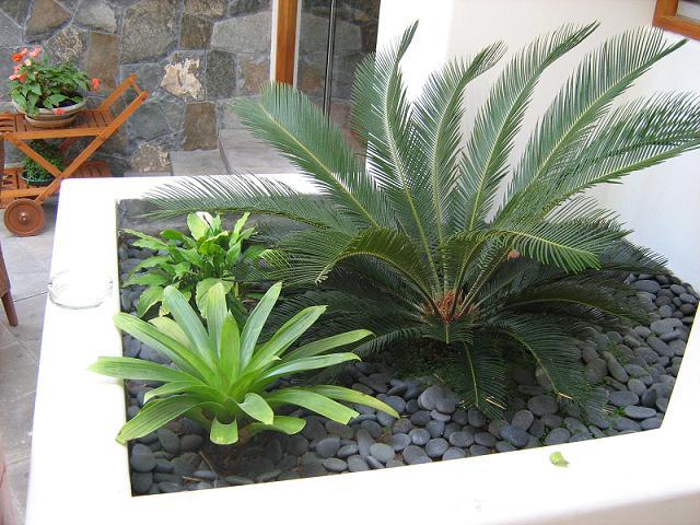 Jardinera con canto rodado rocalisa piedras para - Como hacer jardineras de piedra ...